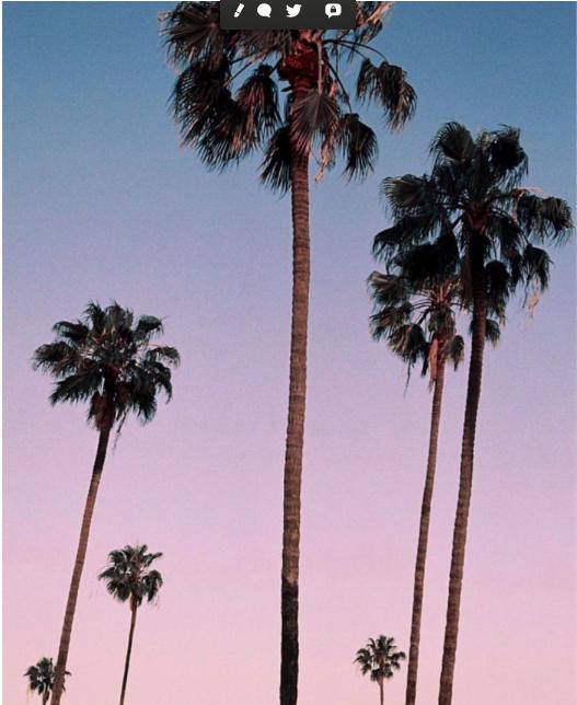 Spécial BeautyTech US – 6 entrepreneurs à suivre à Los Angeles, invités de @BeautyTechLA 🌴🌴🌴