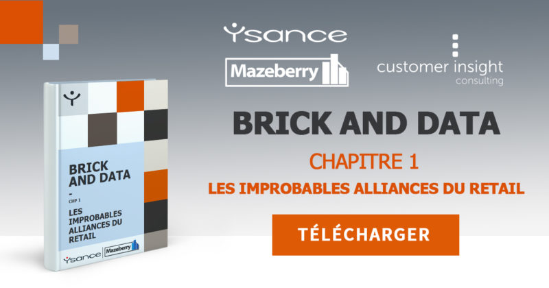 New ebook 📕 | Brick & Data : Les improbables alliances du retail (chap 1)
