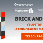 New ebook  📘 | Brick & Data : Les Magasins Qui Performent En Brick Et En Click